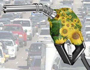 Рафинерията за биодизел в Бургаско е замразена