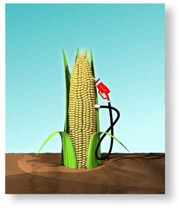 САЩ стимулират развитието на биогоривата с половин милиард долара