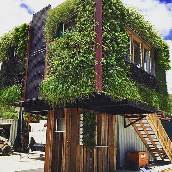 Къща на кокили със зелени стени се захранва от слънцето