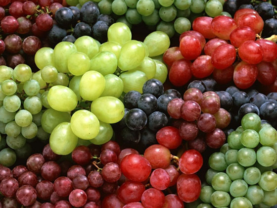 Отпадъци от производството на вино стават суровина за биогорива